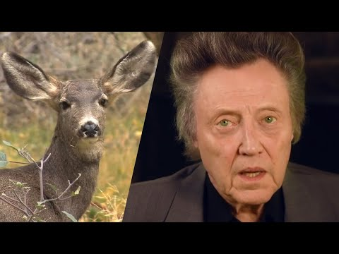 Christopher Walken Speaks Up for Wildlife