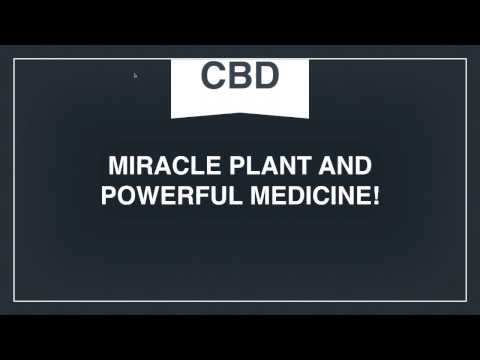 Getting the Positive Effects of CBD