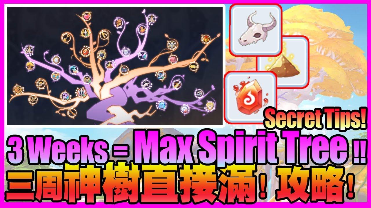 How to earn Fast mat for Spirit Tree?! Secret Tips!! [Ragnarok M Eternal Love]