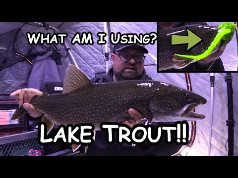 Ice Fishing Lake Trout | Giant Ugly Green Lure!