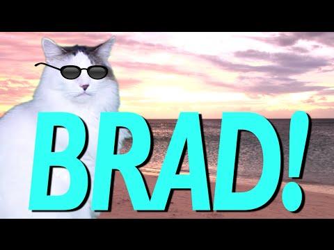 Happy Birthday Brad Epic Cat Happy Birthday Song Youtube