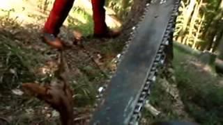 Mein Freund der Baum ist tot, alexandra