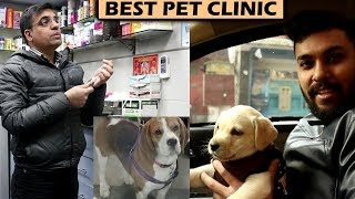 BEST PET CLINIC IN DELHI | EP3 | UngliBaaz Vlogs