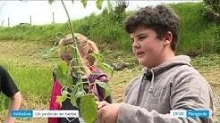 Vincent, 11 ans, jardinier et fédérateur, à Monestier