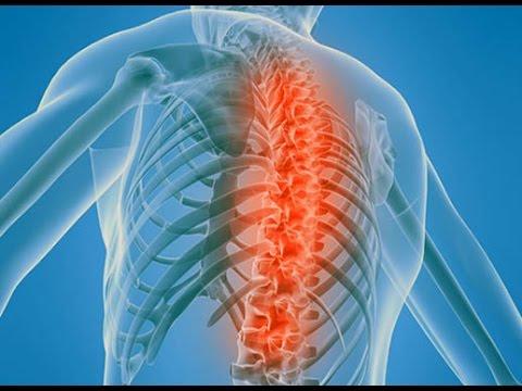 препараты для лечения остеохондроза поясничного отдела