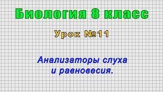 Биология 8 класс (Урок№11 - Анализаторы слуха и равновесия.)