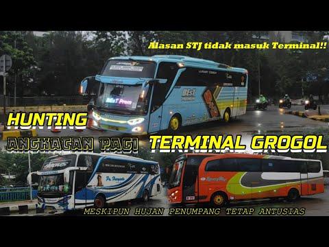 ALASAN STJ Tidak Masuk Terminal Grogol!!! HUNTING ANGKATAN PAGI TERMINAL BUS GROGOL