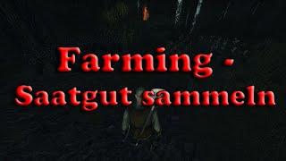 Life is Feudal:YO - Farming: Saatgut sammeln [Early Access]