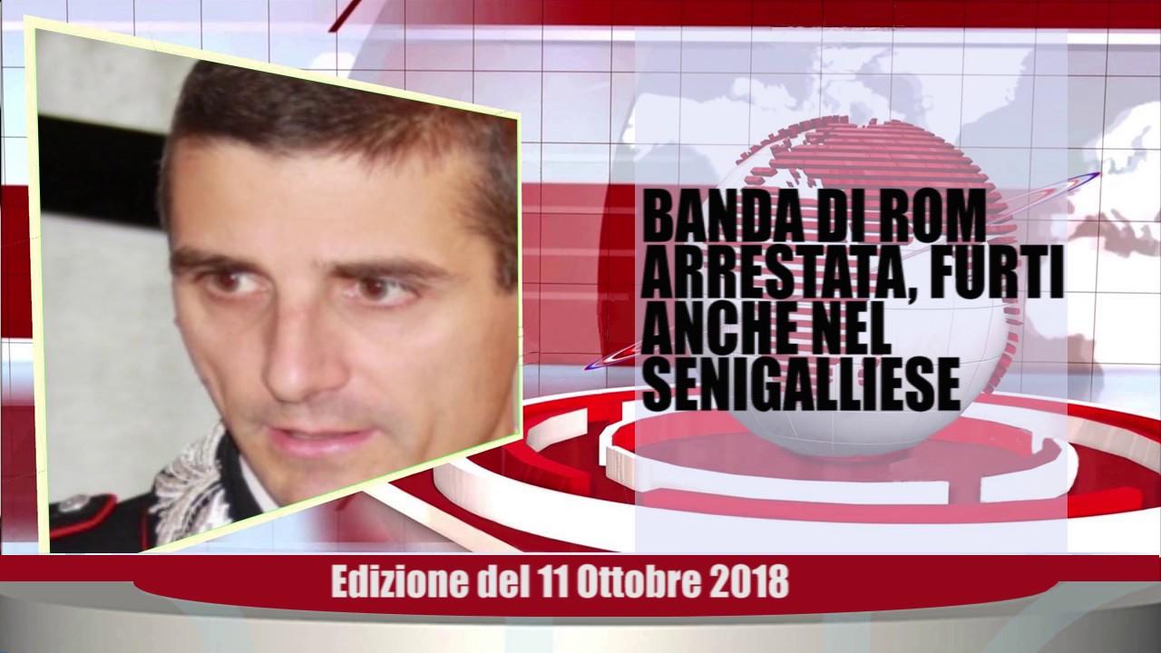 Velluto Notizie Web Tv Senigallia Ed  11 10 2018