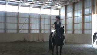 Green Horse Discipline Rail- 5/23