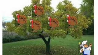 5 fat turkeys are we 11 08 21 21 wmv