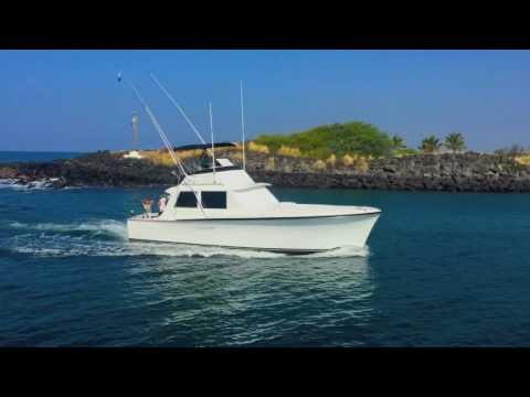 Honokohau Harbor Sportfishing Yachts - Kailua-Kona, Hawai'i
