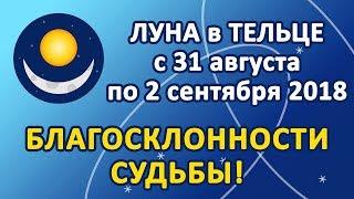 ЛУНА в знаке ТЕЛЕЦ с 31 августа по 2 сентября 2018. Благосклонности Судьбы!