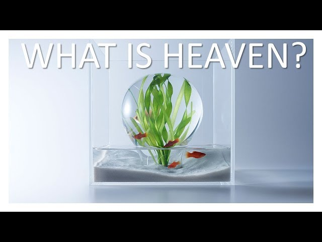What You Need To Know About Heaven