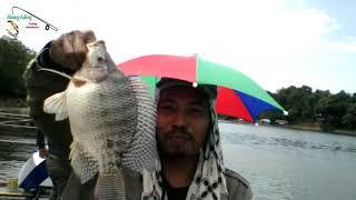 Mancing Nila Waduk Riam Kanan - 05/08/2018