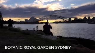 Time-lapse(hd):australia Queen Victoria Building And Botanic Royal Garden Syd