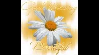 Karaoke Performance - Steve Holy - Good Morning Beautiful