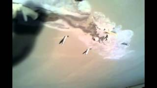 видео Гидроизоляция потолка