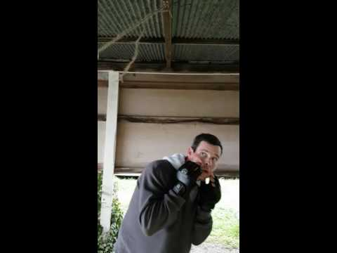 Homemade swing ball Bob and weave boxing gear training