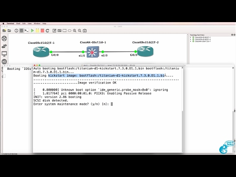 GNS3 Nexus (NX-OSv) switch setup and configuration Part 1: GNS3