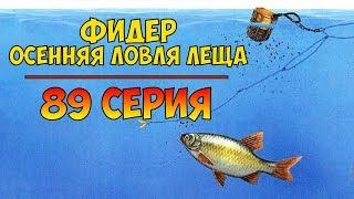 Серия 89. Фидер. Осенняя ловля леща. Рыбалка с Нормундом Грабовскисом.