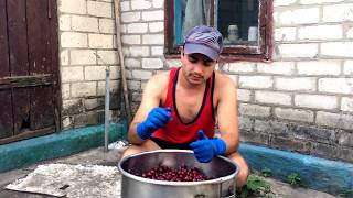 Как сделать вино из вишни. Простой рецепт.
