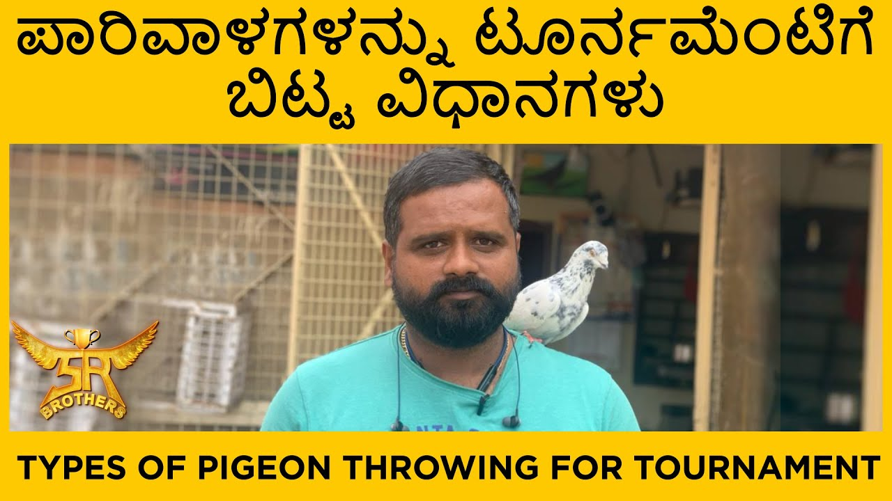 ಪಾರಿವಾಳಗಳನ್ನು ಟೂರ್ನಮೆಂಟಿಗೆ ಬಿಟ್ಟ ವಿಧಾನಗಳು | Types of pigeon throwing for tournament