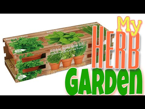 Herb Garden Starter Kit | Kitchen Herb Garden | Things To Do During A Quarantine