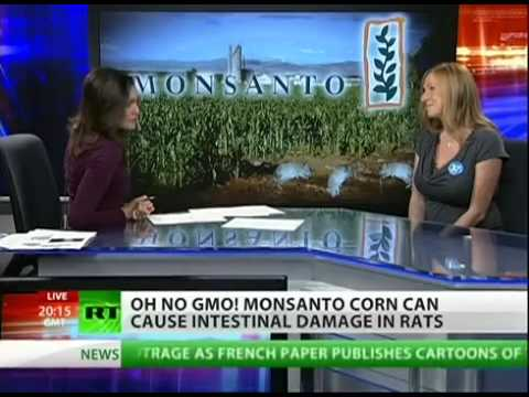 GENETICALLY MODIFIED FOOD Cause TUMORS And SEVERE Organ Dama