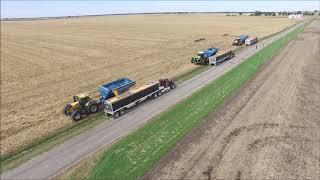 Grain Cart Race 2018
