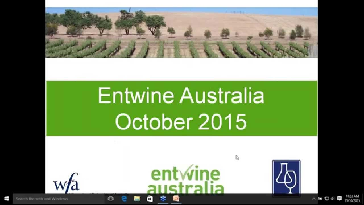 entwine technology