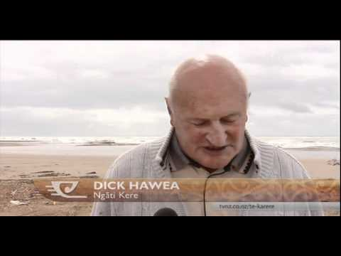 Ngati Kere seek management of marine reserve in Hawke's Bay