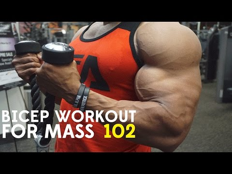 BICEP WORKOUT FOR MASS 102