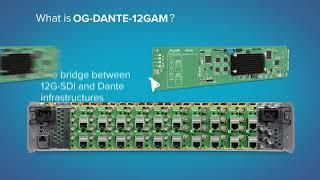 OG-DANTE-12GAM openGear Card