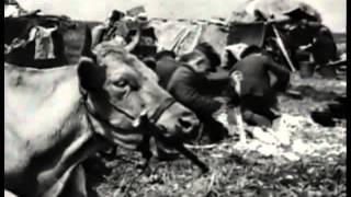 11-летний герой Великой Отечественной войны. О подвиге Юры Жданко в СПЕЦПРОЕКТЕ 31 канала