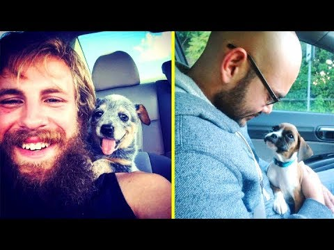 People Met Their Dogs For The First Time And The Looks On Their Faces Will Make Your Day