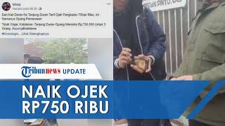Viral Video Opang Peras Penumpang di Terminal Kalideres-Tanjung Duren, Diminta Bayar Rp750 Ribu