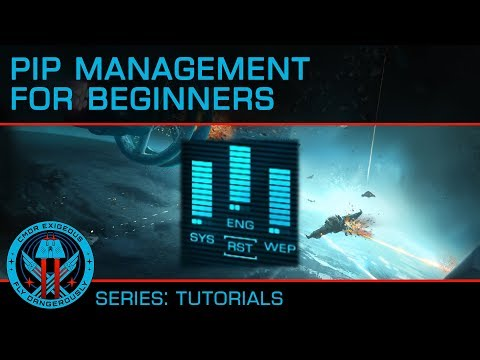 Tutorial: Pip Management for Beginners