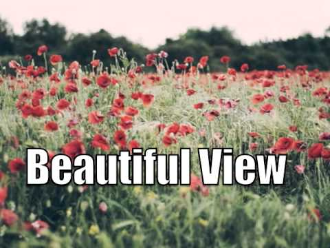 🎸 Acoustic Alternative Country Instrumental - Beautiful View SOLD
