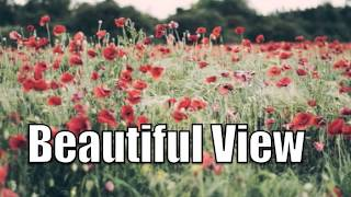 Acoustic Alternative Country Instrumental - Beautiful View SOLD