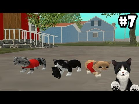 Cat Sim Online: Play with Cats -Life of Cat- Android / iOS - Gameplay Episode 7