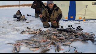 Первый лед 2019 2020 Рыбалка в Якутии Клев продолжается