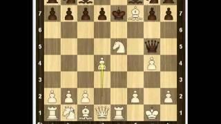 Уроки шахмат - Неправильные дебюты  1