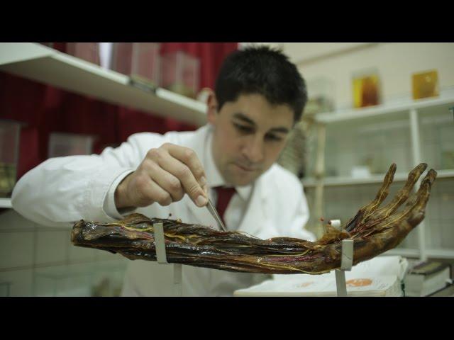 Pequeñas cosas - Sergio, encargado del Museo de Anatomía de la UNLP