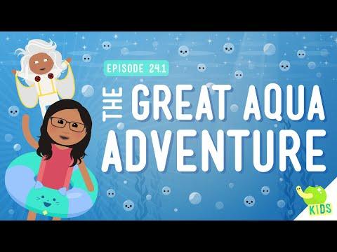 The Great Aqua Adventure: Crash Course Kids #24.1
