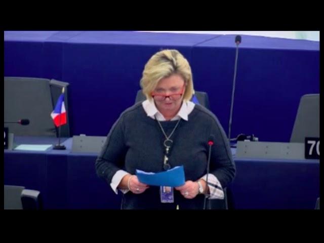 Sylvie Goddyn sur l'impact de la pêche électrique sur les écosystèmes marins