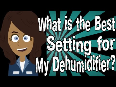 What is the Best Setting for My Dehumidifier? - YouTube