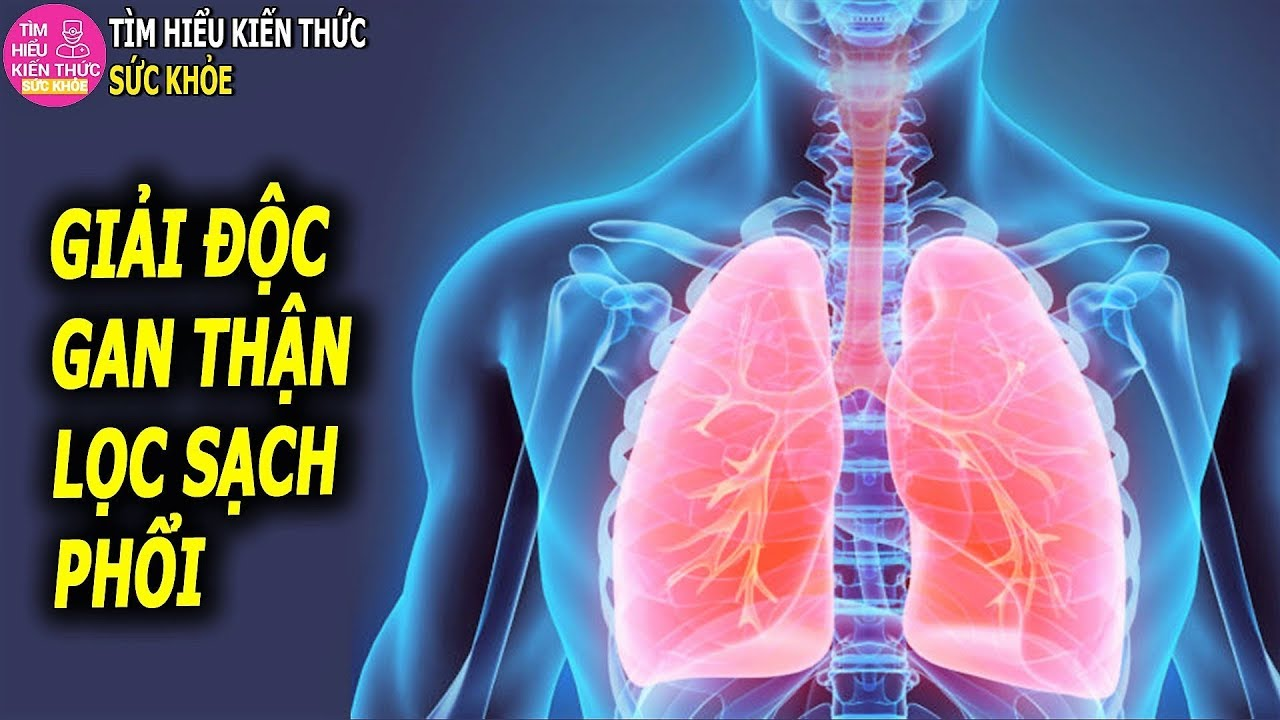 3 Phương pháp giải độc làm sạch gan phổi lọc cặn thận ai cũng nên tham khảo