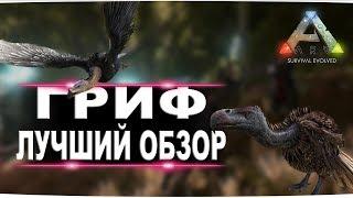 Гриф (Vulture)  в АРК. Лучший обзор: приручение, разведение и способности в ark - Видео от FenomeN GameS