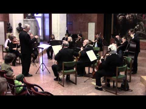 Az Albert Schweitzer kamarazenekar koncertje
